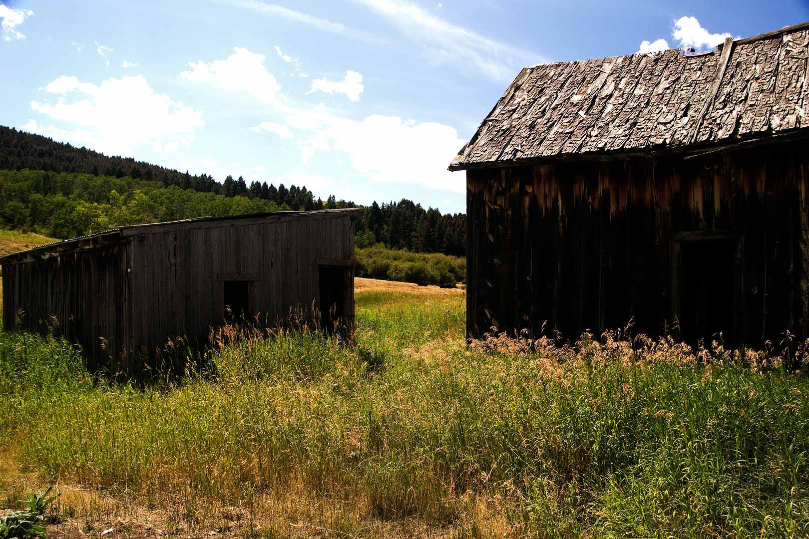 Shiell homestead